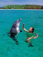 Bahamas Holidays - Get close to nature
